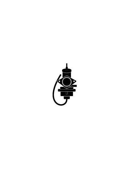Carburatore & Aspirazione