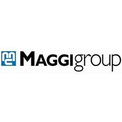 Maggigroup-Abus
